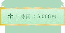 1時間:3,000円
